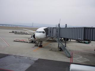 P3220052s.jpg